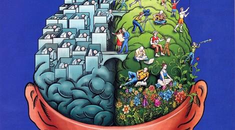 Workshop *het brein achter leren*